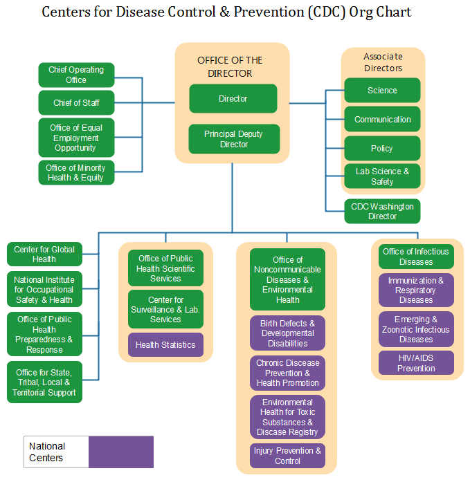 cdc org chart example