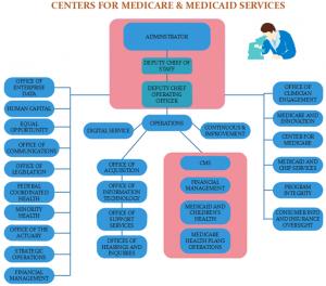 cms-org-chart-template