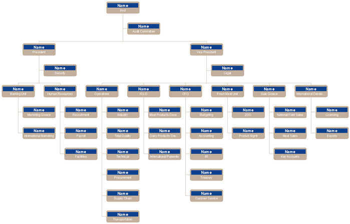 General Type of Corporate Org Chart Template