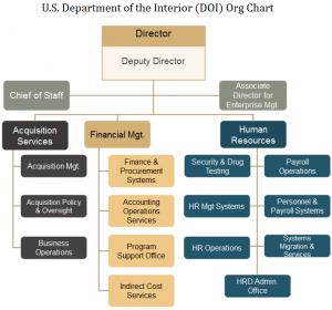 doi-org-chart