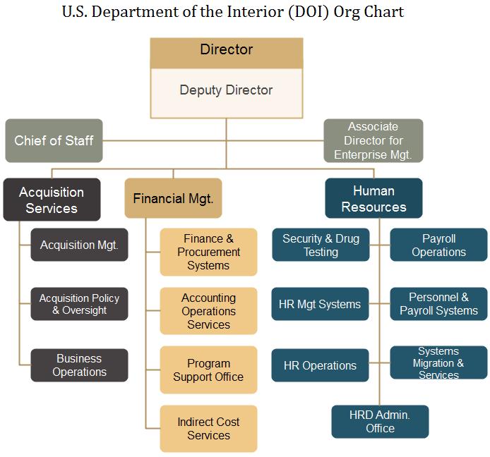doi org chart