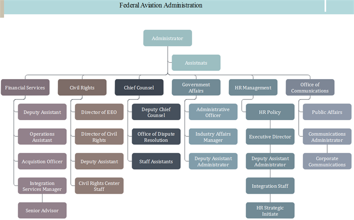faa org chart colorful pattern