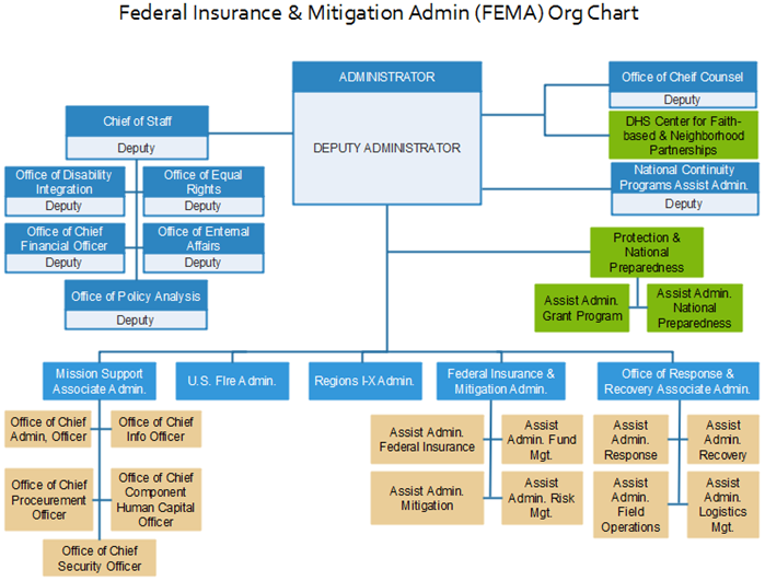 fema org chart example