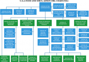 food-and-admin-org-chart