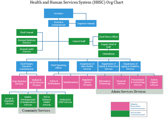 hhsc org chart example