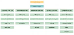 hospital-org-chart-template