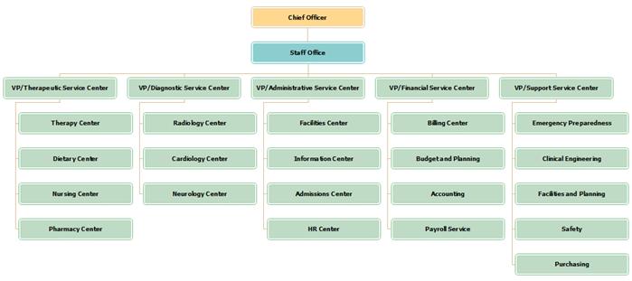 Organizational Chart Templates - Hospitals