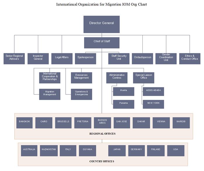 IOM Org Chart