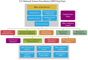 nsf-org-chart