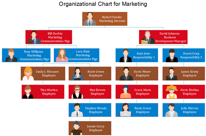 org chart with pictures for marketing division