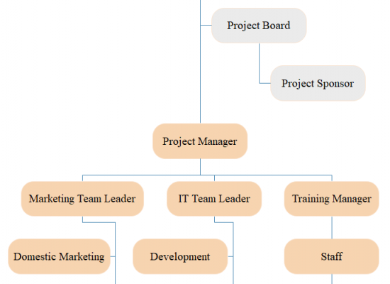 project management organizational chart