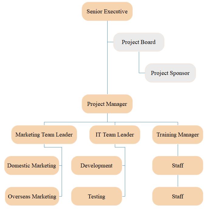 project management organizational chart