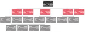 salary-organizational-chart-example