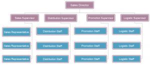 sales department structure
