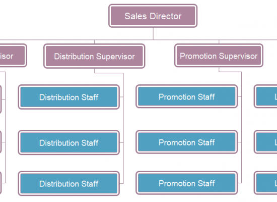 sales department structure