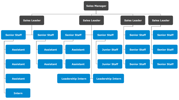 Sales Division Organizational Chart Template