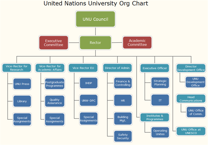 united nations university org chart