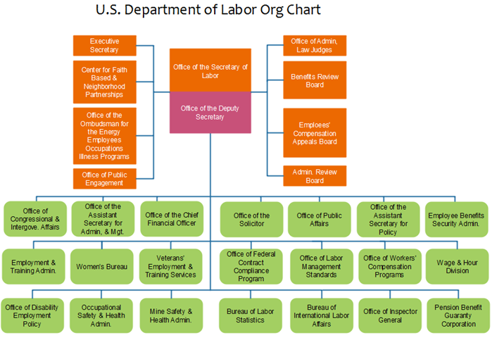 us labor department org chart