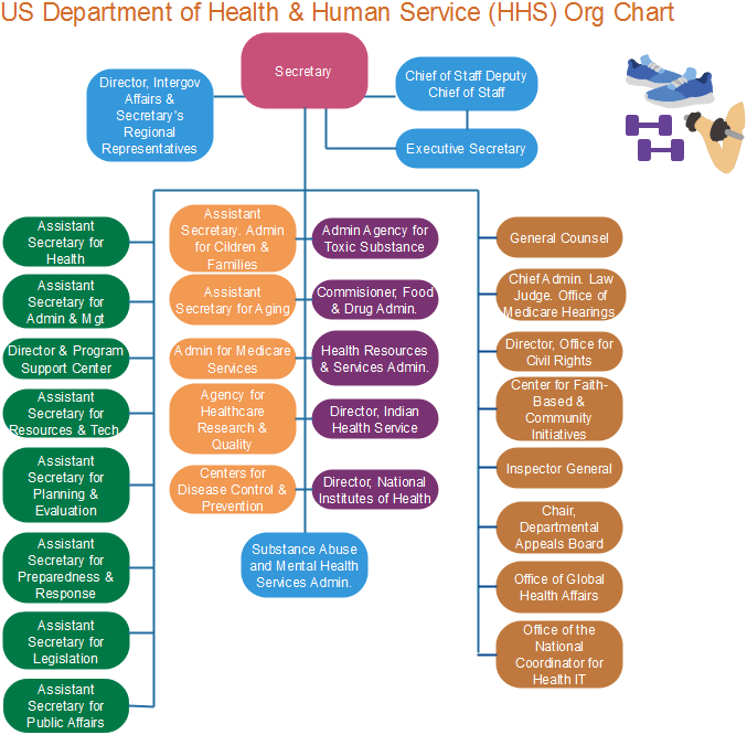 us department of health org chart