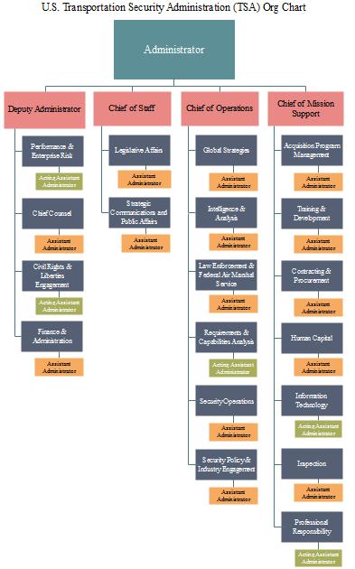 tsa org chart example