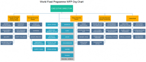 world-food-programme-wfp-org-chart
