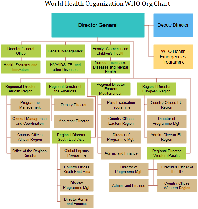 world health organization org chart